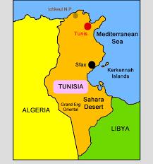 ट्यूनिसियामा आतंककारी आक्रमणमा ६ सैनिकको मृत्यु