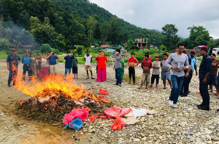 मकवानपुरमा दुई क्वीन्टल बढी गाँजा प्रहरीले जलायो