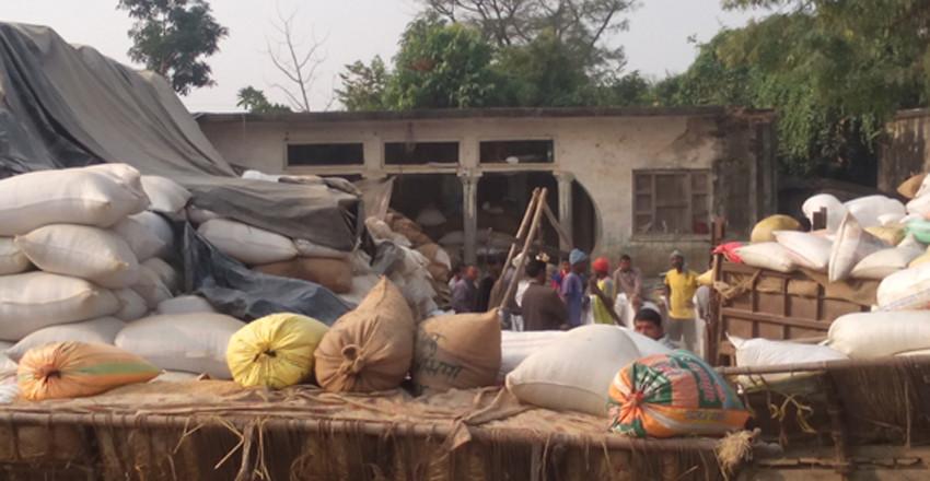 धानमा सिन्डिकेट : सरकारले तोकेको मूल्य पाएनन् किसानले