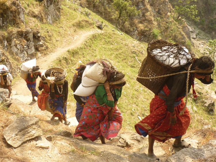 खाद्यान्न सकियाे: उत्तरी धादिङका पाँच परिवार भोकै
