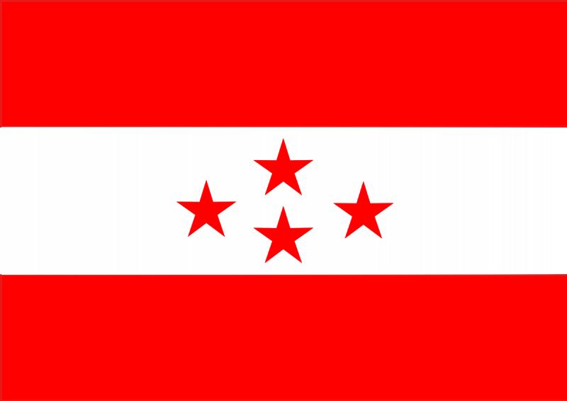 नेपाली कांग्रेस सडक–सदन दुवैतिर कमजोर