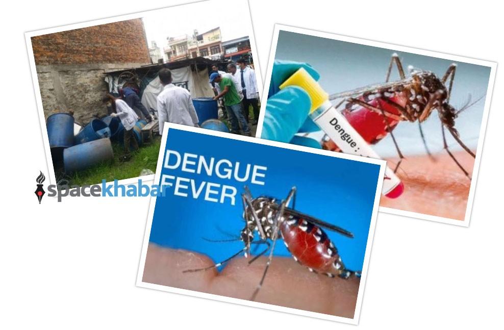 तराईदेखि पहाडसम्मै डेंगु संक्रमण : राजधानीसमेत जोखिममा, डाक्टर-नर्स पनि संक्रमित