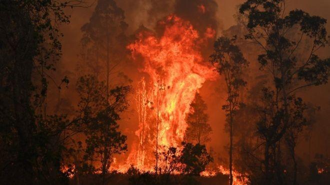अस्ट्रेलियामा भीषण आगलागी, ३ को मृत्यु, हजारौं घरबारविहीन