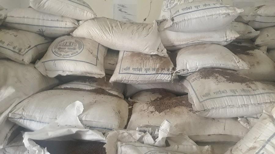 कर्मचारीको चरम लापरबाही : लाखौं मूल्यको चामल गोदाममै कुहियो