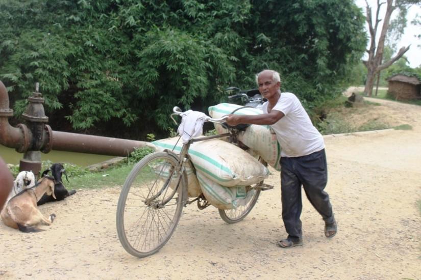भारतीय मलको भरमा कपिलबस्तुका कृषक खेती गर्दै