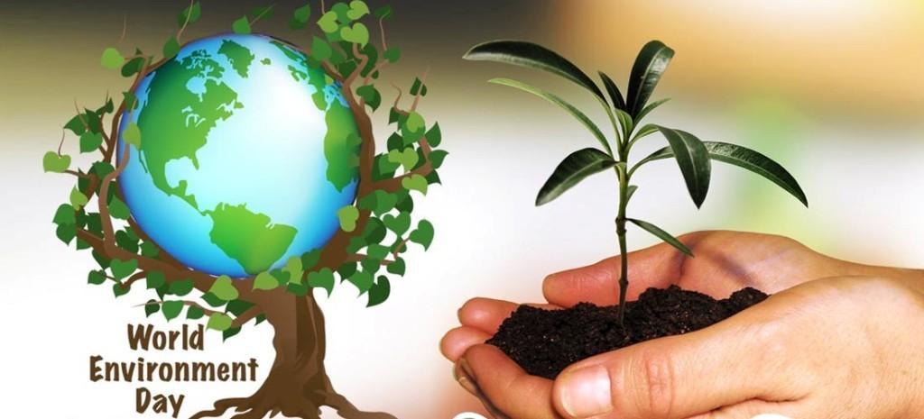 सामाजिक सञ्जाल मार्फत मनाइँदै विश्व वातावरण दिवस